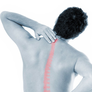Spinal Screenings